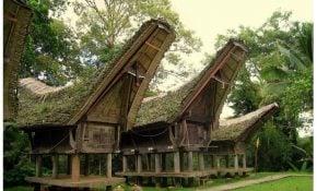 Menyenangkan 21 Gambar Rumah Adat Sulawesi 52 Untuk Perencana Dekorasi Rumah untuk 21 Gambar Rumah Adat Sulawesi